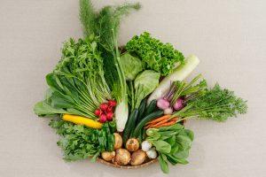 五人坊主の野菜